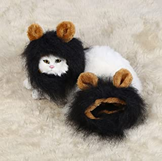 Best cat king costume Reviews