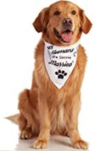 Odi Style Engagement Gifts Dog Bandana - Wedding Gift Signs My Humans are Getting Married White Dog Bandana for Small, Medium, Large Dogs, Bridal Shower Photography Props Pet Dog Accessories Scarf