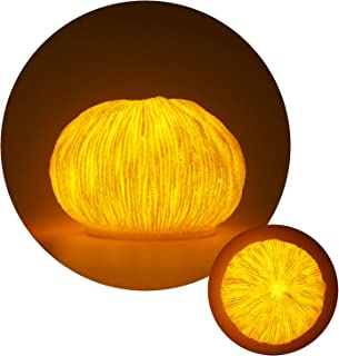 Pumpkin LED Night Light, Battery Operated Halloween Light with Timer for Party, Birthday, Christmas, Indoor, Bedroom, Livi...