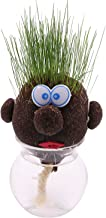 AvoSeedo Grass Head - Funny Fast Growing Grass Head Learning Toy for Kids (Mixed Emotion Heads)