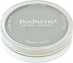 Armadillo Art & Craft Colorfin PanPastel Ultra-Soft 9ml Artist's Pastel: Neutral Grey