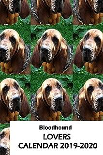 Bloodhound Lovers Calendar 2019-2020