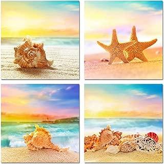shells on beach photos
