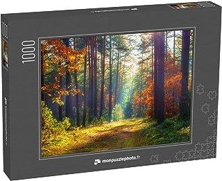 monpuzzlephoto Puzzle 1000 pièces Paysage Naturel d'automne Forêt d'automne ensoleillée Beaux Arbres colorés dans la forêt...