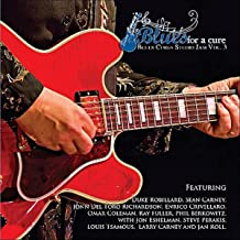 Sean Carney's Blues For A Cure - Blues Cures 3