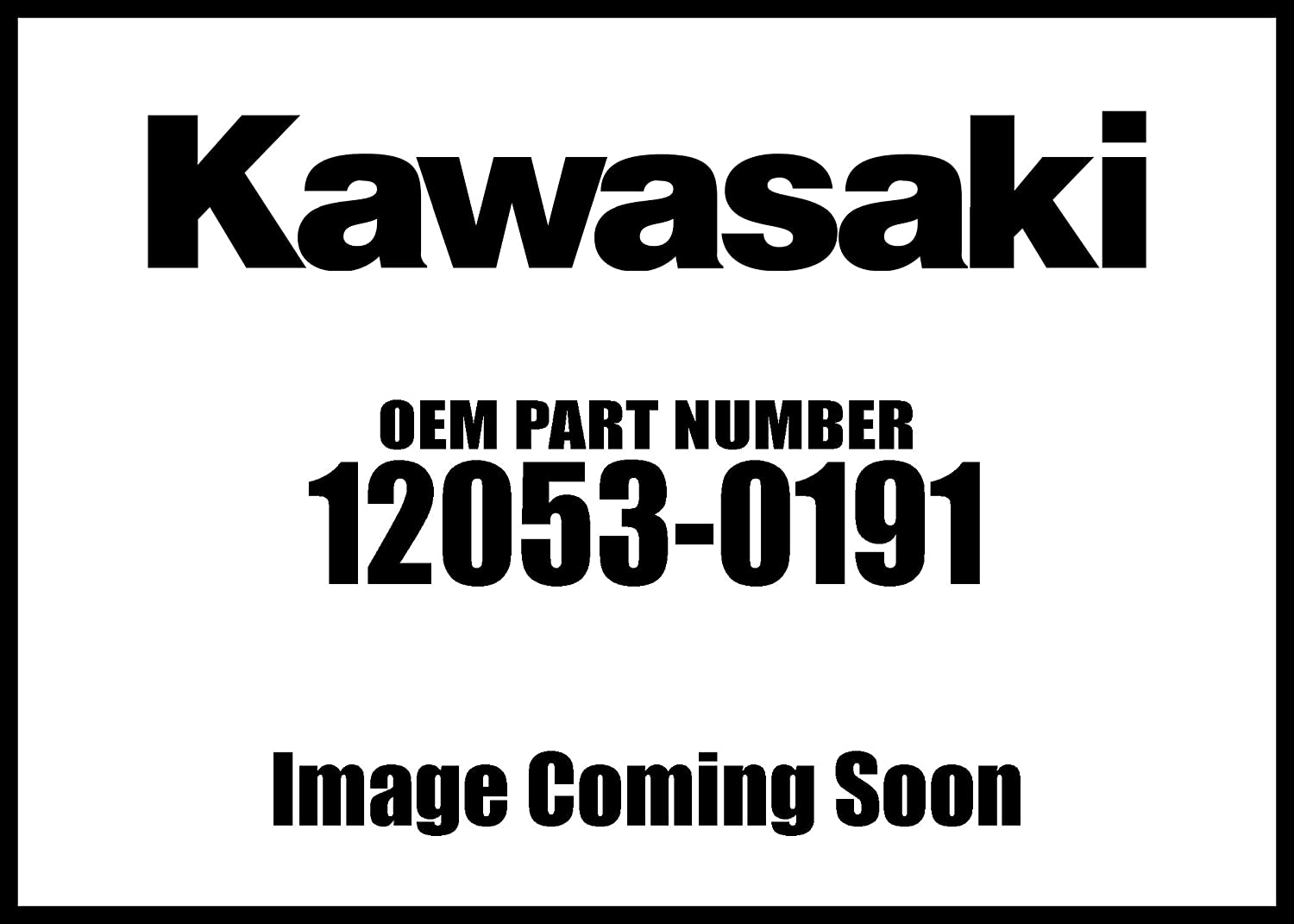 Kawasaki SEAL limited product Guide-CHAINRR Year-end gift 12053-0191