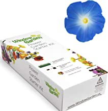Garden Starter Kit (Morning Glory) Grow a Garden by Seed. Germinate Seeds on Your Windowsill Then Move to a Patio Planter or Flower Patch. Mini Greenhouse System Makes it Foolproof, Easy and Fun.