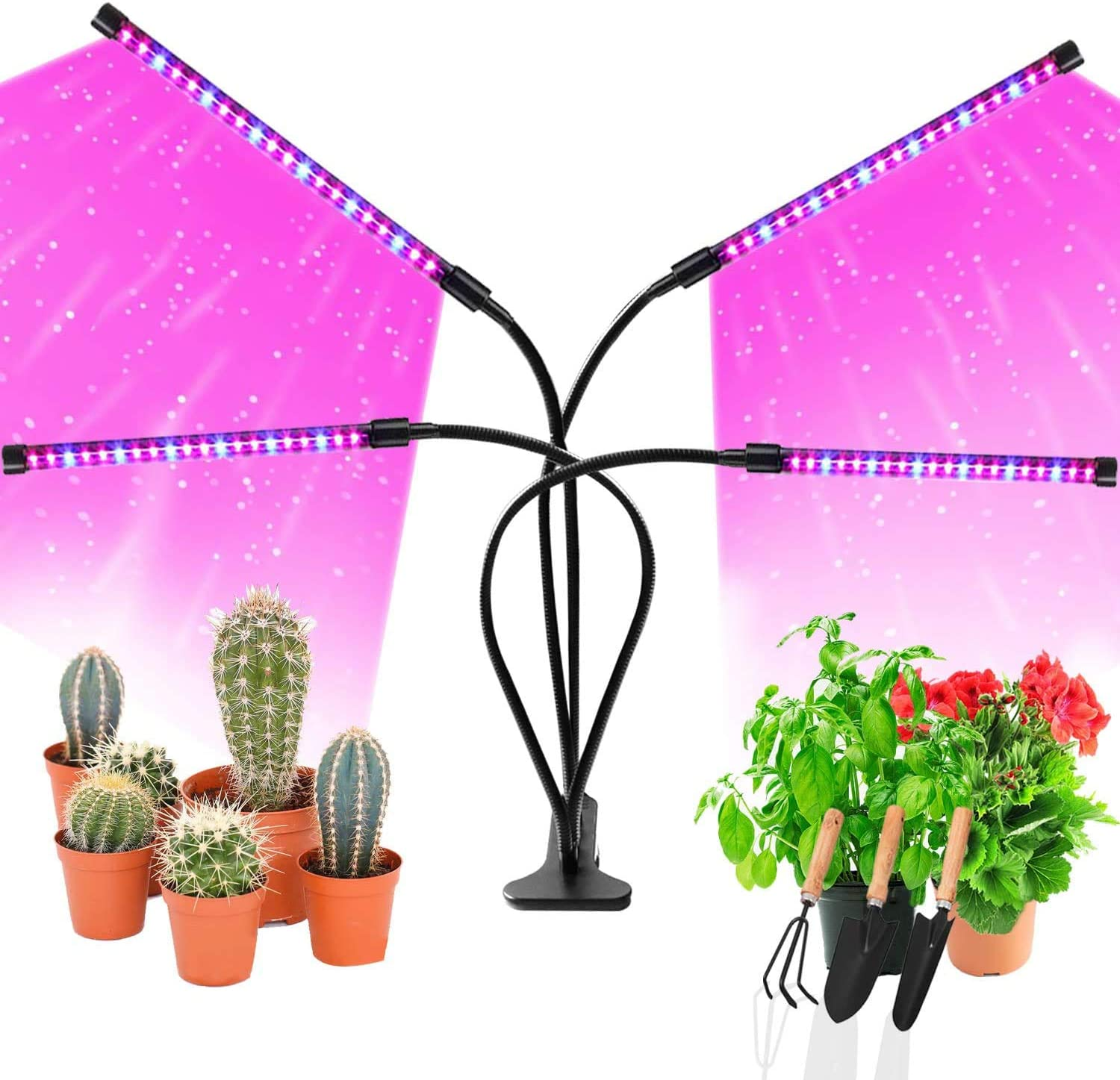 Amazon.com: LED Grow Lights for Indoor Plants, JUEYINGBAILI 80W Full  Spectrum Plant Lights with Auto ON/Off 3/9/12H Timer, 9 Dimmable Brightness  for Indoor Succulent Plants Growth : Patio, Lawn & Garden