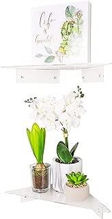 AVA Concepts Acrylic Floating Corner Shelf | Clear Wall Mounted Corner Shelves (Set of 2)