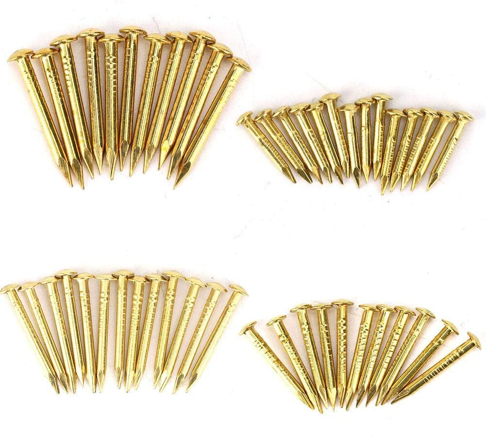HEEPDD 100Pcs Brass Escutcheon Tacks Popular popular Head Brad Round Popularity Nail