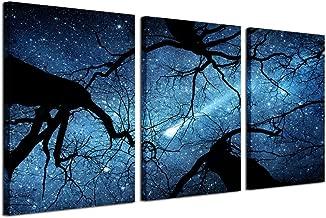 the night sky print price