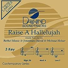 Raise A Hallelujah Accompaniment/Performance Track