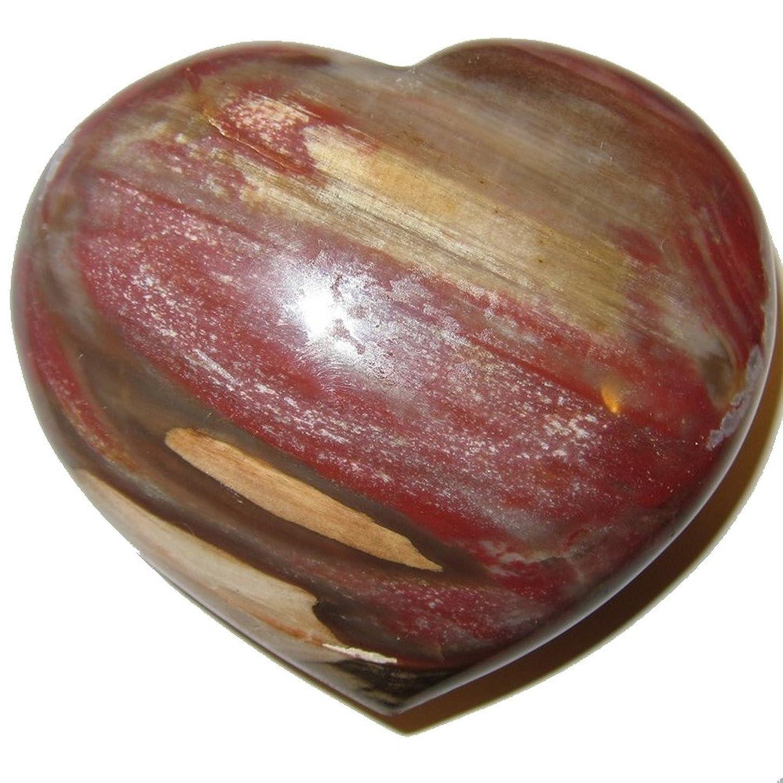 マスタードタンク始めるサテンクリスタルPetrified Wood Heart 3.3?