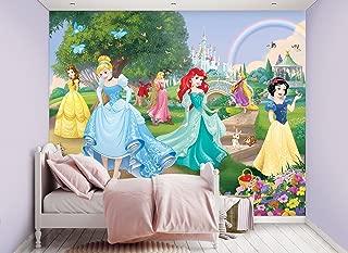 Best disney princess mural wallpaper uk Reviews
