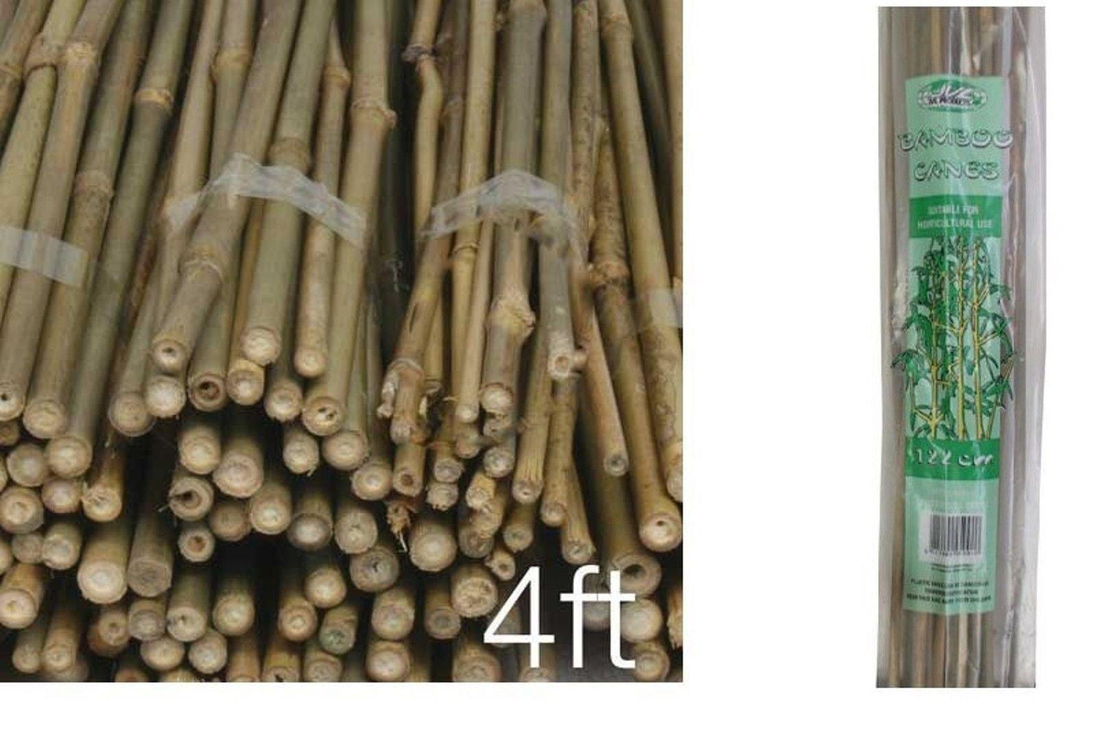 100 x cañas fuerte bambú natural bambú madera caña valla del jardín flor planta apoyo 4 feet- 120 cm: Amazon.es: Jardín