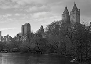 JP London MDXL4102PS uStrip Peel and Stick Central Park New York City Removable Full Wall, 12' x 8.5', Black/White