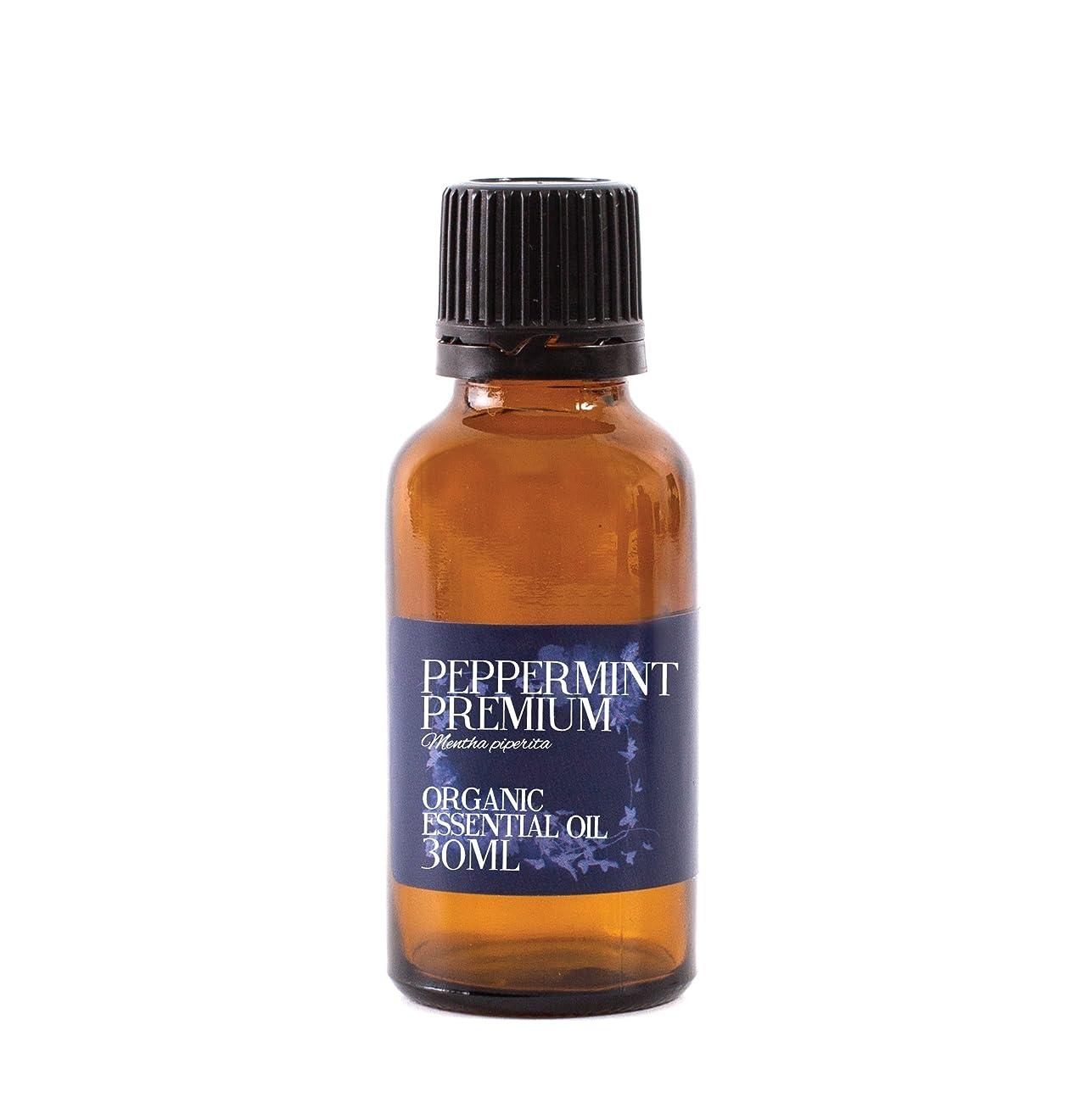 解説ブランクグレートバリアリーフMystic Moments | Peppermint Premium Organic Essential Oil - 30ml - 100% Pure