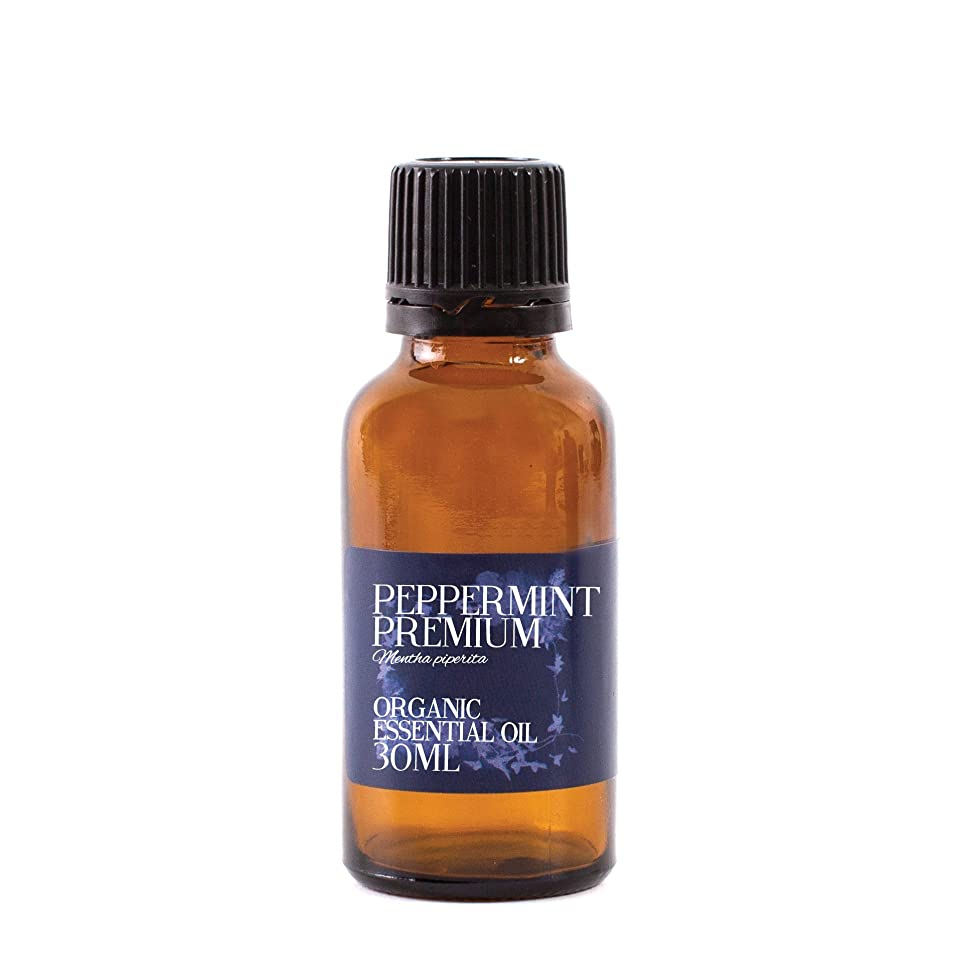 オートマトン収まるランクMystic Moments   Peppermint Premium Organic Essential Oil - 30ml - 100% Pure