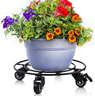 plant coasters with wheels