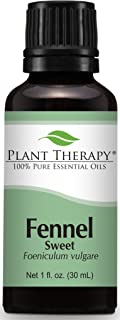 Plant Therapy Fennel (Sweet) Essential Oil 30 mL (1 oz) 100% Pure, Undiluted, Therapeutic Grade