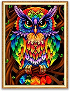 5D Diamond Painting Kits for Adults,Owl Full Drill Cross Stitch Crystal Rhinestone Embroidery...