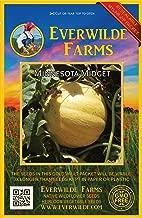 Everwilde Farms - 50 Minnesota Midget Melon Seeds - Gold Vault Jumbo Seed Packet