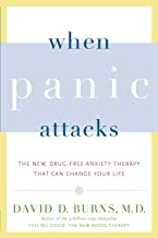 When Panic Attacks: A new drug-free therapy to beat chronic shyness, anxiety and phobias PDF