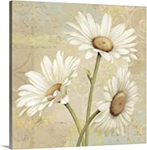 Beautiful Daisies II Canvas Wall Art Print, 16