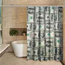 Lohebhuic Money 3D Printed Shower Curtain Dollar Bills of United States Federal Reserve with The Portrait of Ben Franklin Hotel Quality Machine Washable W48 x L70 Inch Pale Green Grey