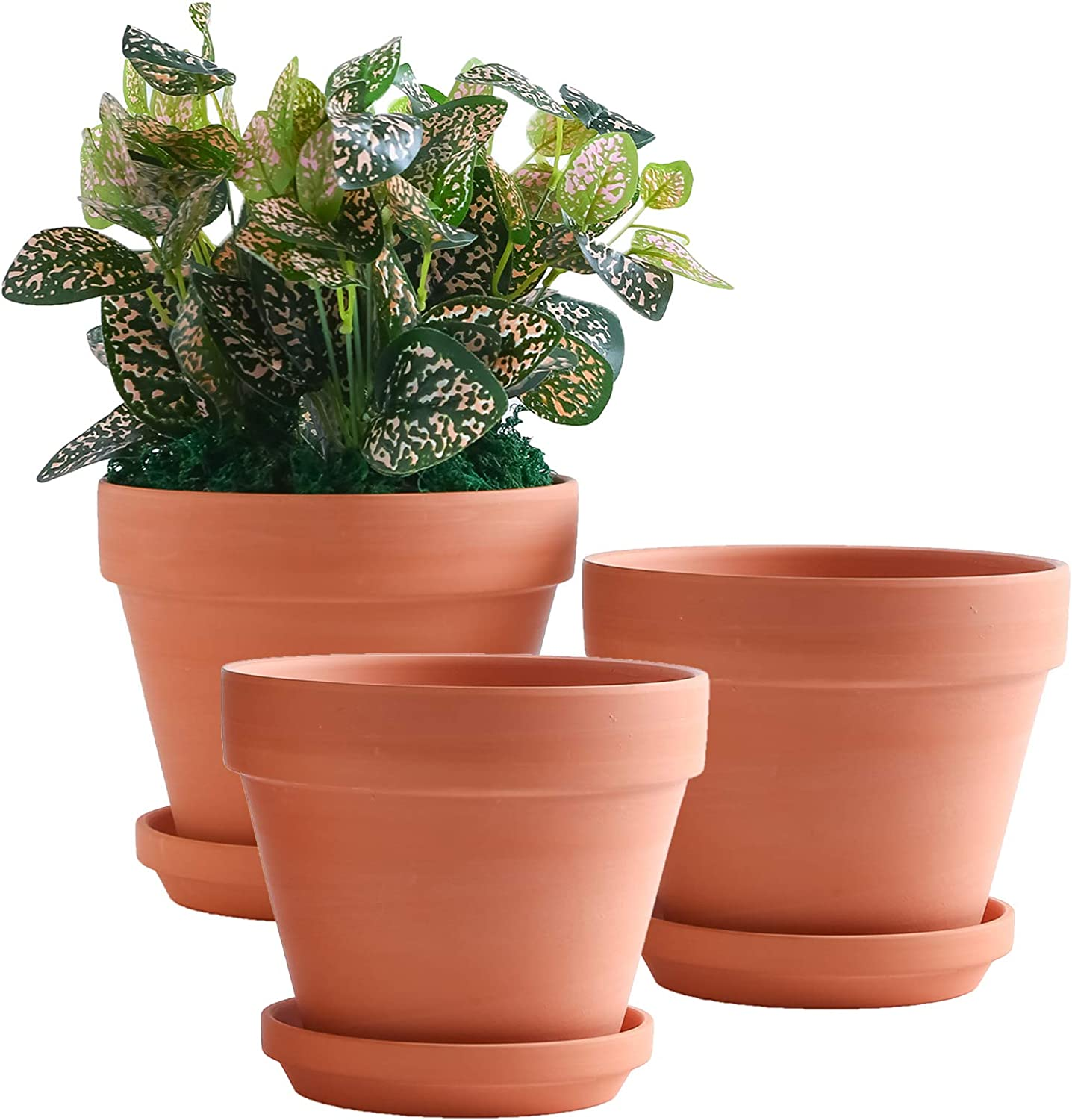 YISHANG 8 Inch Clay Pot for Plant with Saucer   8 Pack Large Terra Cotta  Plant Pot with Drainage Hole, Clay Planters Pot, Terracotta Pot for Indoor  ...