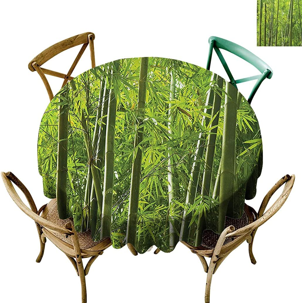 Bamboo Now free shipping Table Cover Exotic Tropical with Trees Colo Gifts Fresh