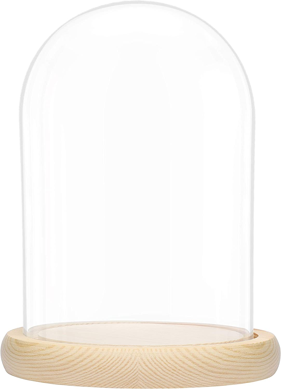 BELLE VOUS Cúpula Cristal Jarra Domo Campana con Base de Madera Natural – 20cm - Campana Cristal Decorativa Transparente Centro de Mesa con Base para Luces de Hada - Urna de Cristal Antigüedad