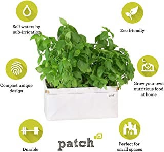 9OR3W 9970 Compact Self Watering Herb and Greens Planter, Original, White