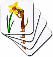3dRose Funny Brown Dachshund Puppy Dog Sniffing Daffodil Flower Art - Soft Coasters, Set of 4 (CST_204422_1)