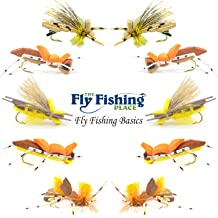 The Fly Fishing Place Basics Collection - Foam Hoppers Dry Fly Assortment - 10 Dry Fishing Grasshopper Flies - 5 Patterns - Hook Size 10