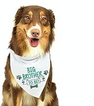 Big Brother Dog Bandana, Pregnancy Announcement Dog Bandana, Gender Reveal Photo Prop, Pet Scarf, Pet Accessories