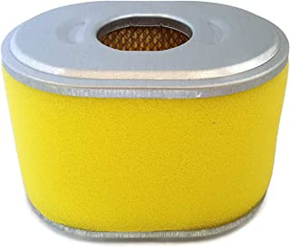 Amazon.es: generador honda - Filtros de aire / Filtros: Jardín