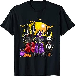 Black Lab Dog Family Of Three Family Halloween Gift T-Shirt