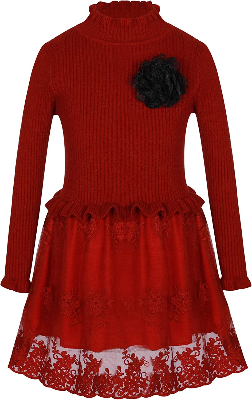 Bonny Billy Girl's Long Sleeve Sweater Embroidered Flower Tulle Skirt Kids Winter Dress