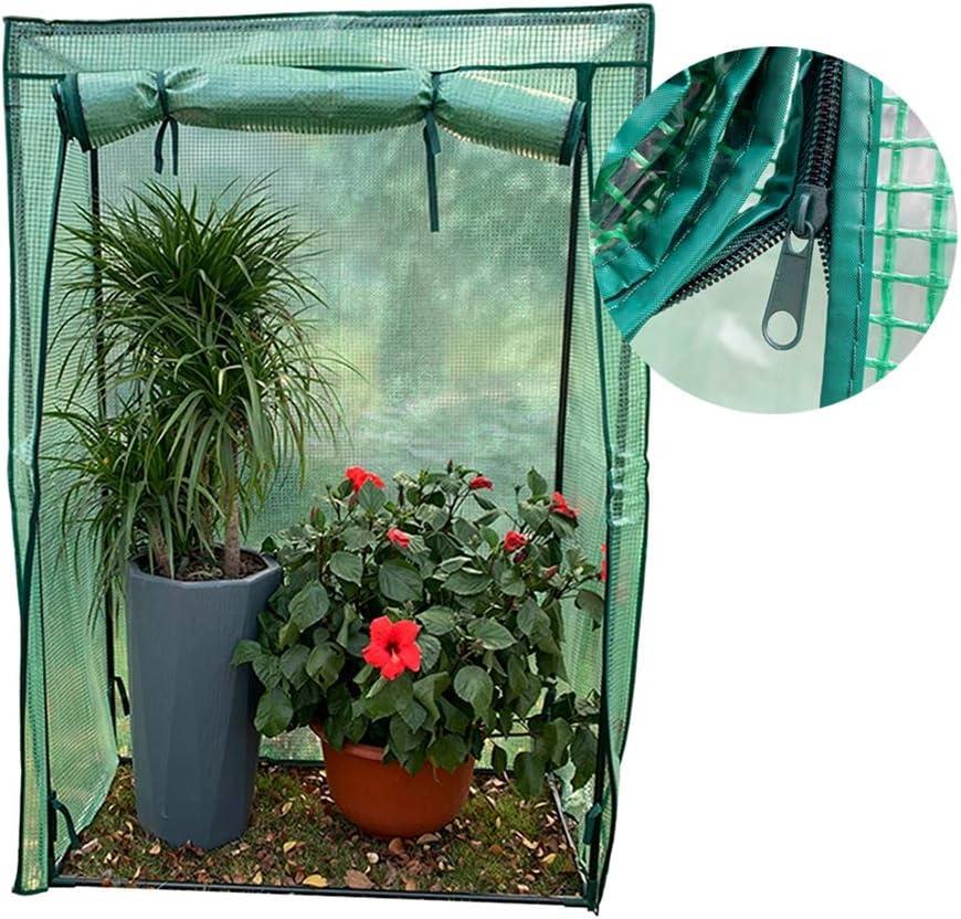 Vert Costway Serre de Jardin Portable avec Porte /à Fermeture Enroulable Fen/êtres dObservation B/âche en PVC 8 /Étag/ères 142 x 142 x 195 CM pour Semis,Fleurs,Culture de Plantes
