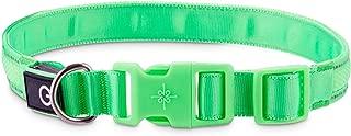 GOOD2GO Neon Green LED Light-Up Dog Collar