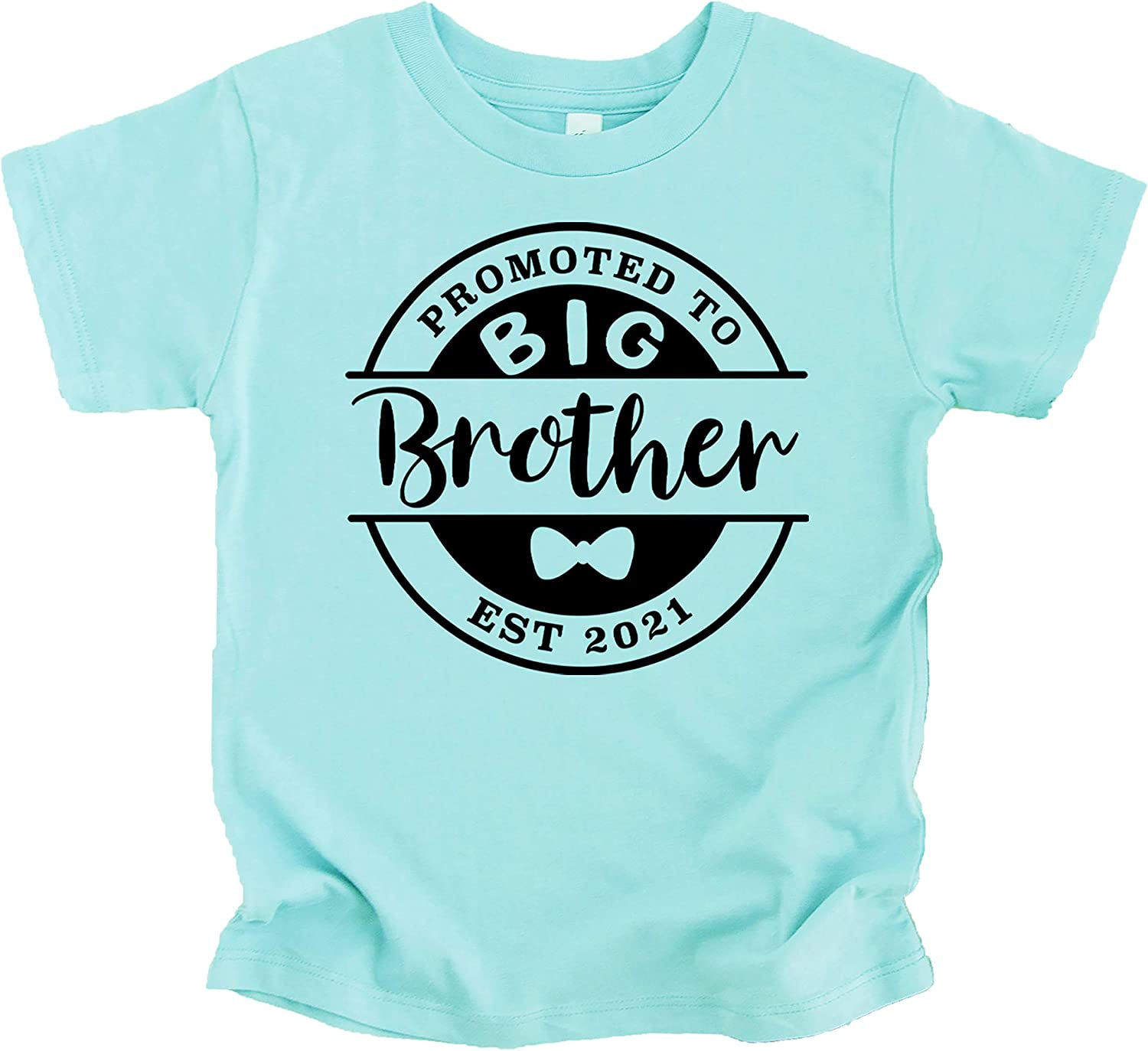Promoted to Big Brother Est. 2021 Sibling Announcement T-Shirts and Raglans
