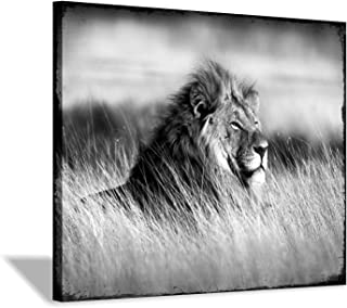 Lion Canvas Wall Art Print: Animal Graphic Artwork Painting on Canvas for Wall Decor (16''x12'')