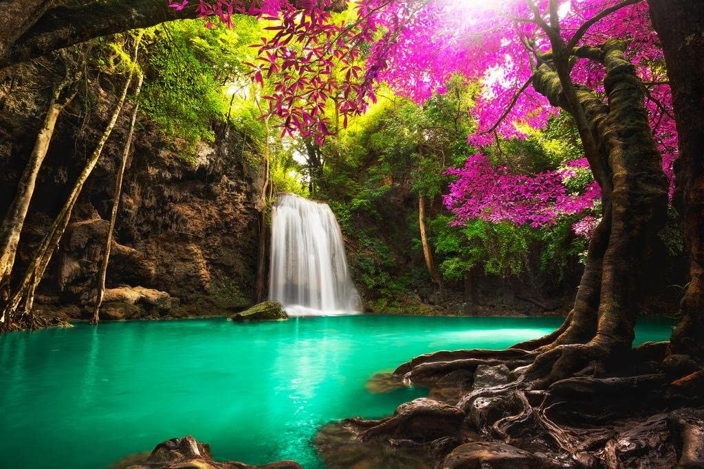 Amazon Com Poster Foundry Beautiful Waterfall In Tropical Forest Photo Print Stretched Canvas Wall Art 24x16 Inch Posters Prints