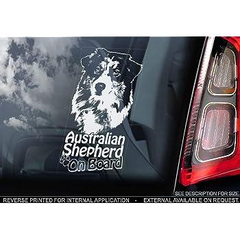 Sticker International Australian Shepherd Autoaufkleber Hund Schild Fenster Stoßstange Aufkleber Geschenk V003 Weiß Klar Externe Außen Aufdruck 195x100mm Küche Haushalt