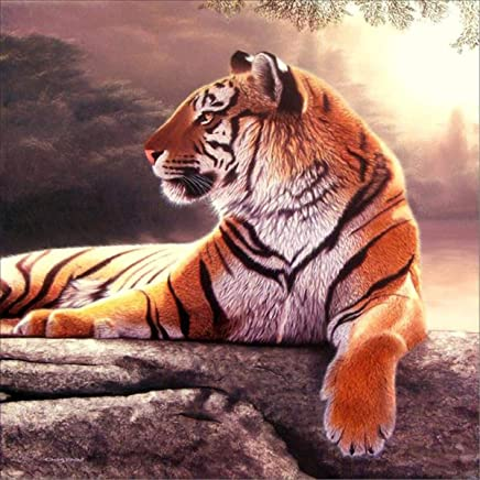 EOBROMD 5D Diamond Painting, Full Drill Painting with Diamonds Embroidery Painting Wall Sticker for Wall Decor - Tiger 12x12inch