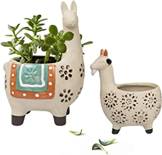 alpaca plant pot