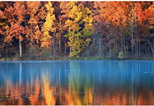 Leyiyi Autumn Scenic Beautiful Lake Scenery Backdrop 10x8ft Vinyl Photography Backdrop Red Maple Leaves Clear Waved Lake Water Outgoing Hike Traveling Personal Portraits Studio Props Party Decoration