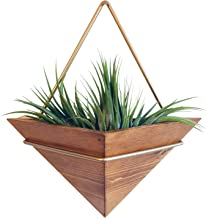 Artisanal Geometric Air Plant Holder – Made From, Sustainably Sourced Wood – Minimalist Style & EasyToHang Design – Ethical Geometric Wall Decor Air Plant