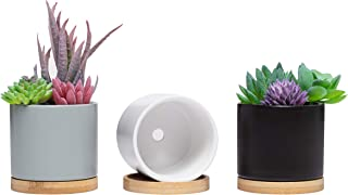 Small Succulent Cylindrical Ceramic Plant Pots - Mini Clay Planters for Bonsai, Plants, and Succulents, Little Planters with Small Drainage Hole and Bamboo Drainage Tray, Indoor Pots (Set of 3)